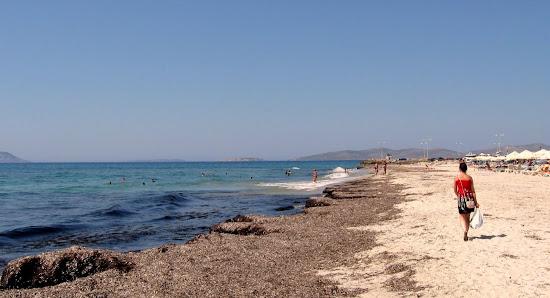 plaża Mastichari Beach na Kos