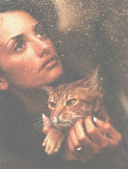 Penelope Cruz and a cat 3