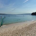 Swimming net at Shark Bay (252065)