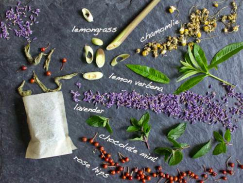 Best Herbs To Use In Teas