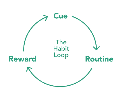 Hygiene Habit Loop for Safety Day Food Safety Training