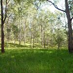 Pleasent grassy flat (362393)