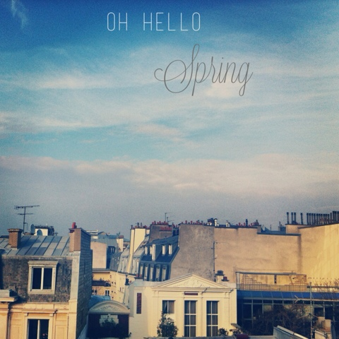Spring time on Paris rooftop