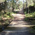 Causeway on Blackwattle trail (152806)