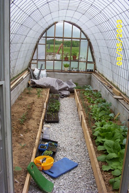 In my kitchen garden looking back building a simple for Simple homemade greenhouse