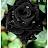 naresh devarapu avatar image