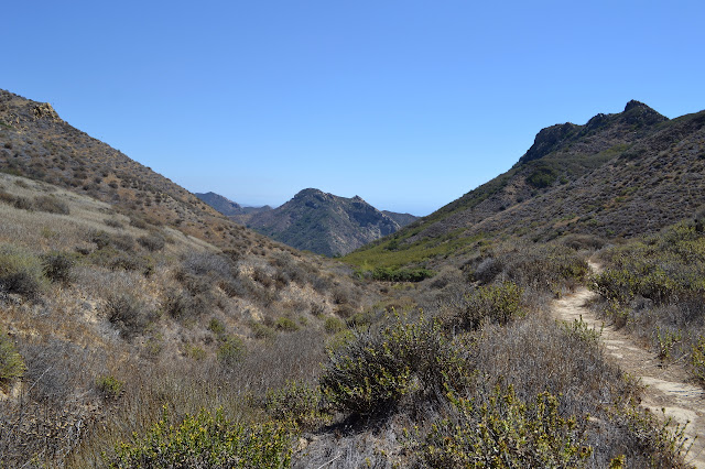 last of the trail up to the saddle