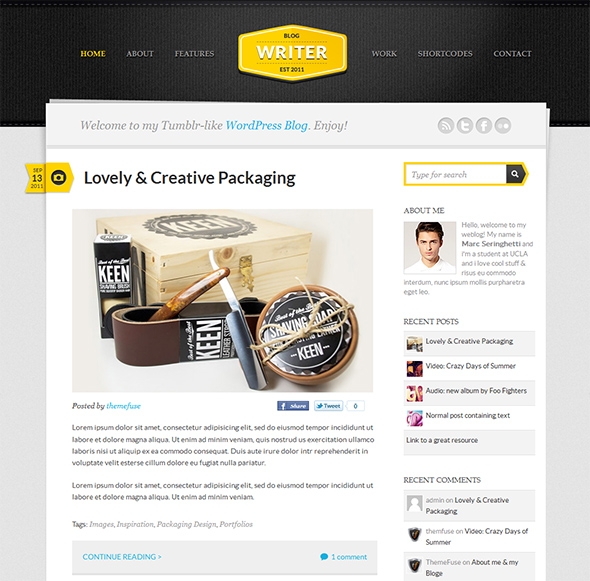 Blog Writer Tumblr Style WordPress Theme