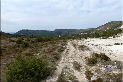 Camino de Arluzea