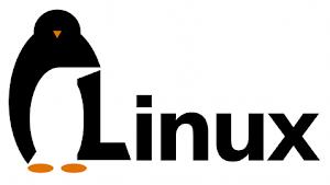 Kernel Linux 3.10