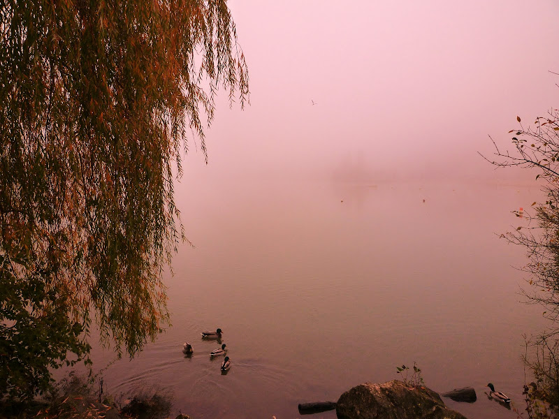 lac du chanoine Kir