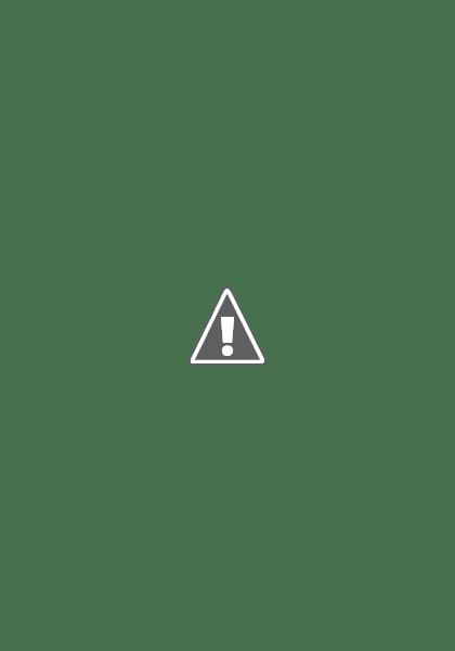 Camos rusos (en imágenes) October93-22