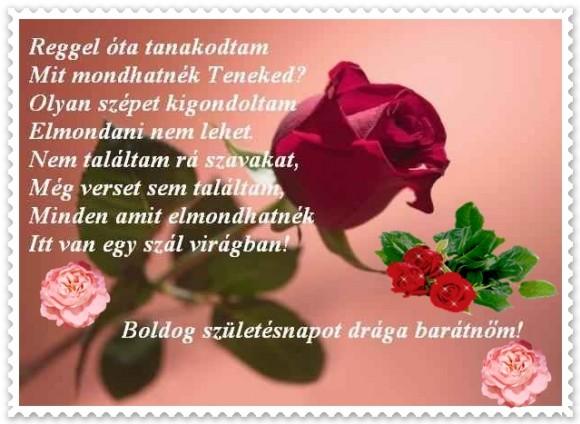 boldog születésnapot barátnőm Boldog Szülinapot Drága Barátnőm   MuzicaDL boldog születésnapot barátnőm