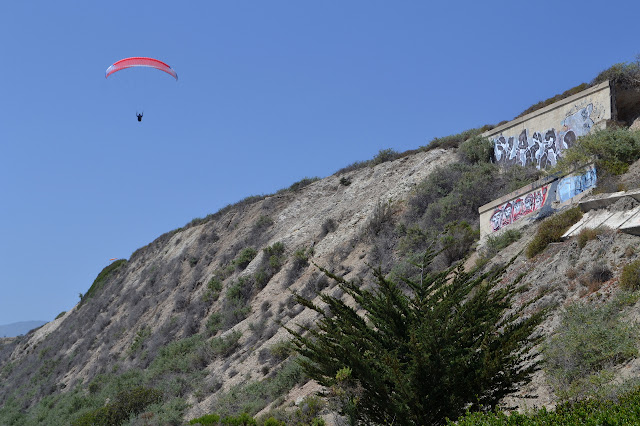 paraglider low on the cliffs