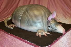 Armadillo Grooms Cake Tradition