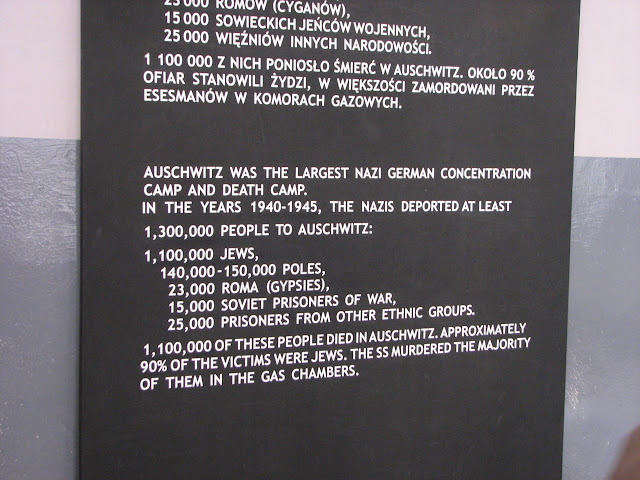 Sobering thoughts at Auschwitz