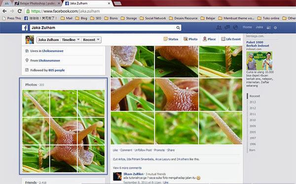 Facebook Jaka Zulham