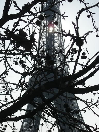 paris  16th arrondissement