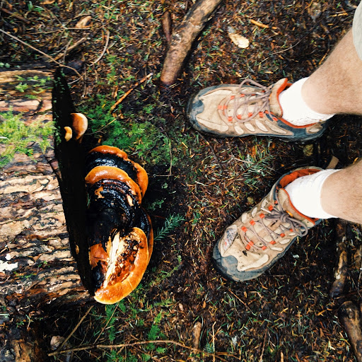 Feet and Fungus. To Peden Lake and Beyond: A Photoadventure