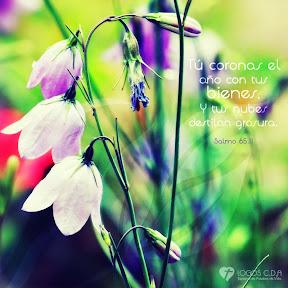 Salmo 65.11
