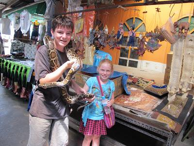 Snakes in Bangkok