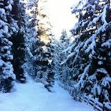 Wandern - Winter-Impressionen 2012