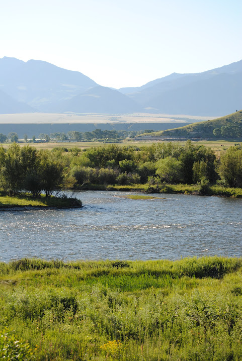 Madison River real estate for sale