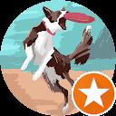 Dee Takach