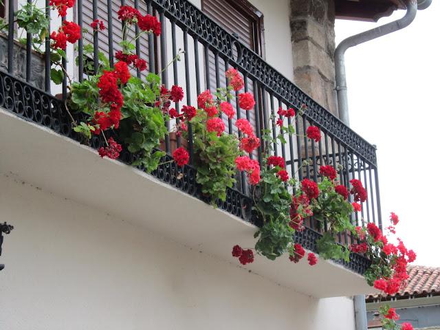 Paseo por Cartes (Cantabria) IMG_0942
