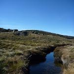 Cascade Creek (281879)
