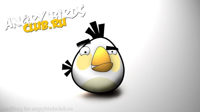 Hình nền về những chú chim điên trong Angry Birds - Ảnh 6