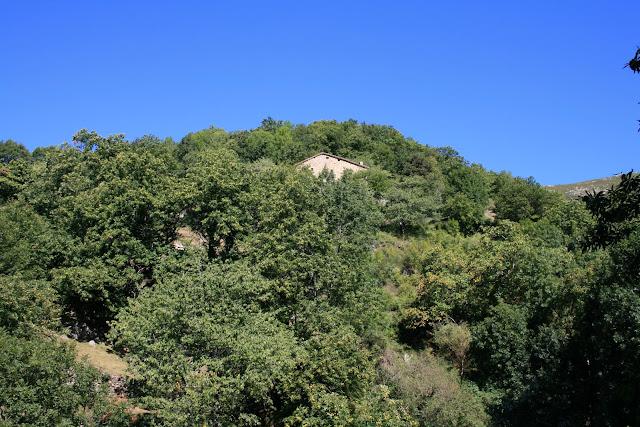 Une maison dans les châtaigniers près d'Aizac