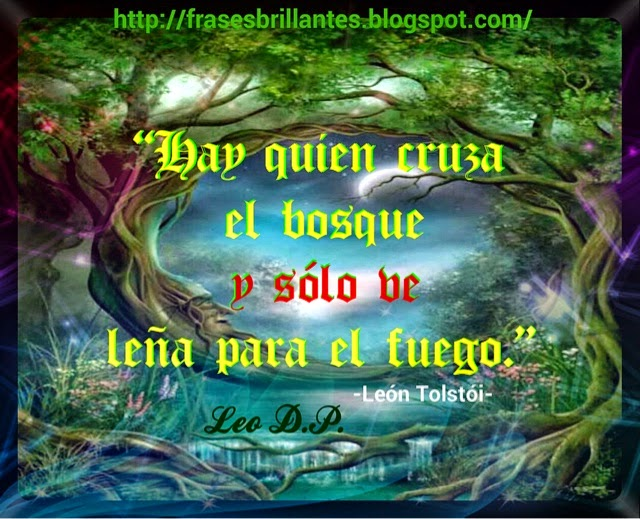 Frases Brillantes Bright Phrases Hay Quien Cruza El Bosque Y