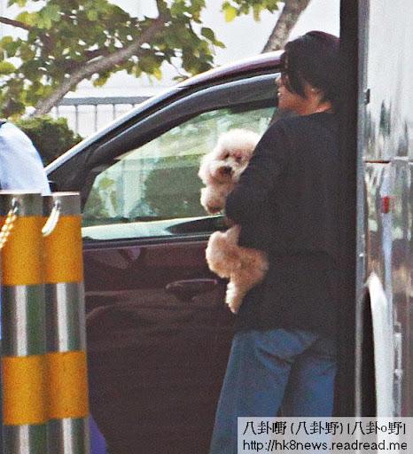 落車時,廖碧兒都抱實愛犬,反而狗仔好奇,好想離開主人衝落地。嗱,主人俾人飛咗,咁寂寞嘅時候,正正要你安慰一下呀!