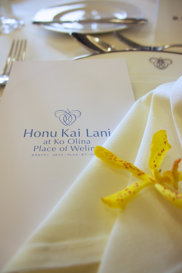Honu Kai Lani