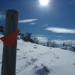 Snow pole in the sun (301585)