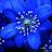 Barbara DeLeon avatar image