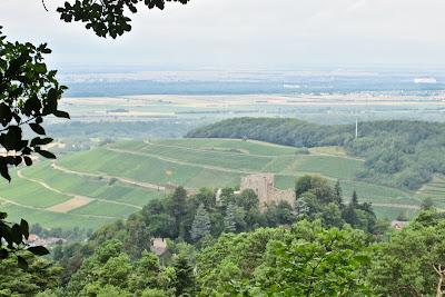 Blick von der Sophienruhe auf die Burg Baden ...