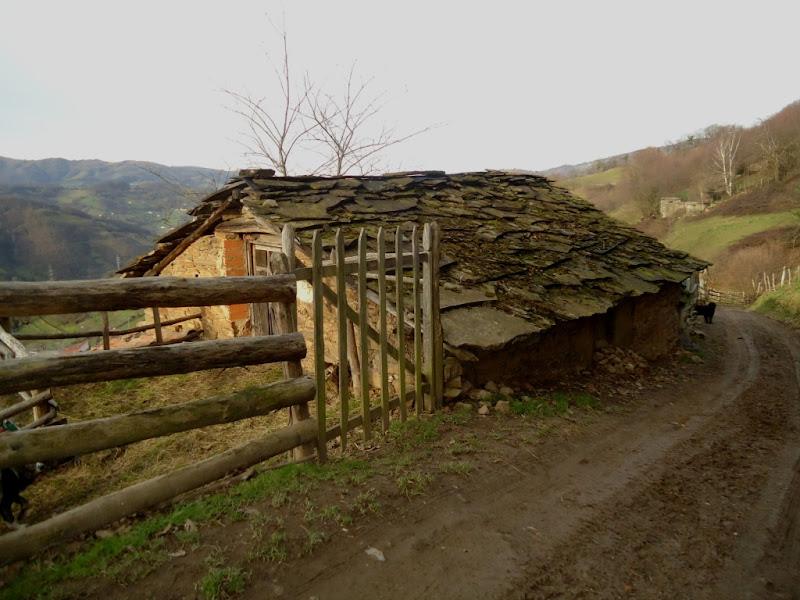 Cabaña en el posauriu