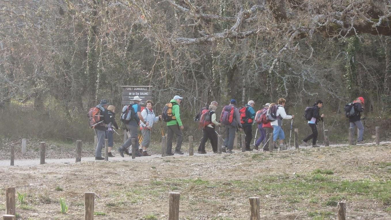 Randonnées des 3 Clubs du 11 avril 2015-Circuit vert de 13 Km DSCN9597
