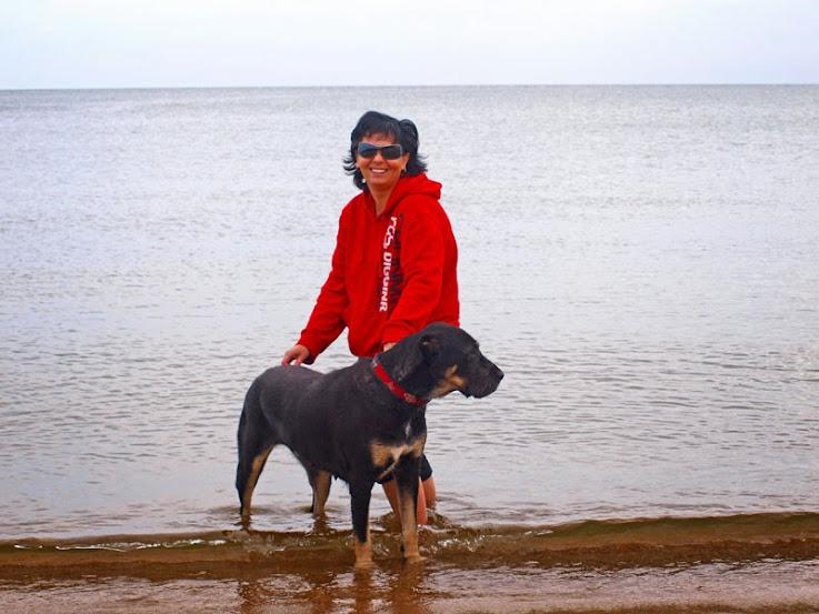 Středoasijský pastevecký pes - VARORUD & EL - ZHADYGAY