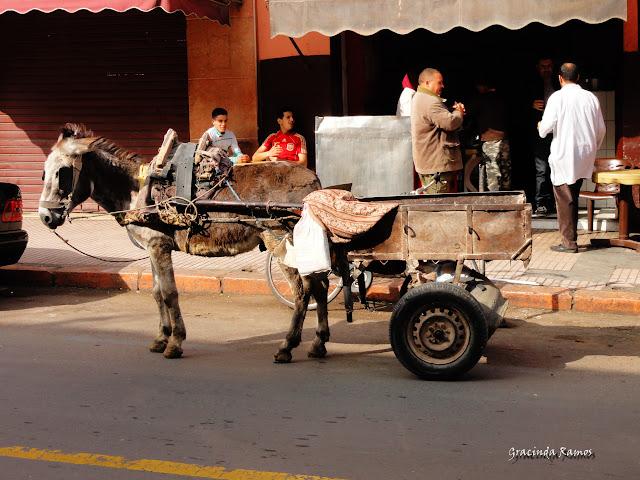 Marrocos 2012 - O regresso! - Página 4 DSC05074