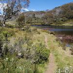 East side of Rainbow Lake (97018)