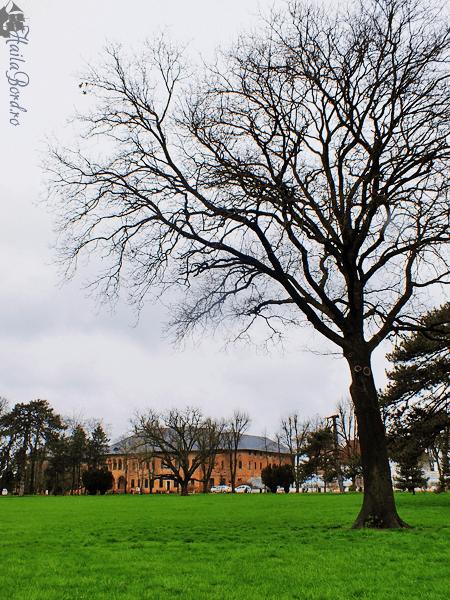 palatul mogosoaia 2015