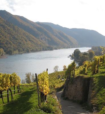 Vineyard walk in the Wachau. From Austria for Wine Lovers