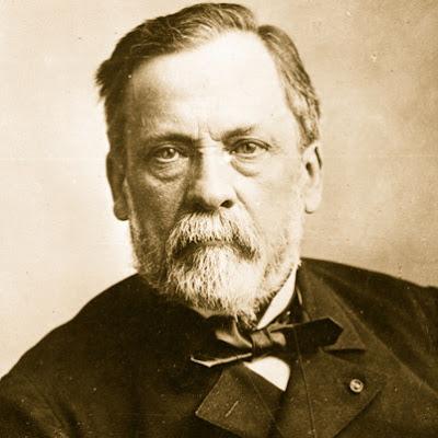 Louis Pasteur Sang Pelopor Mikrobiologi