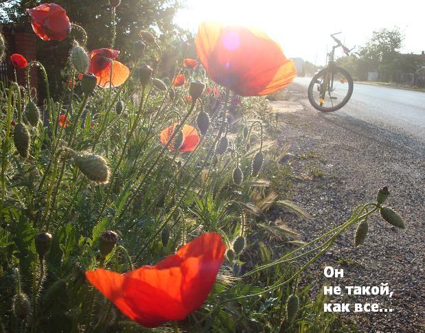 постановочное фото с велосипедом