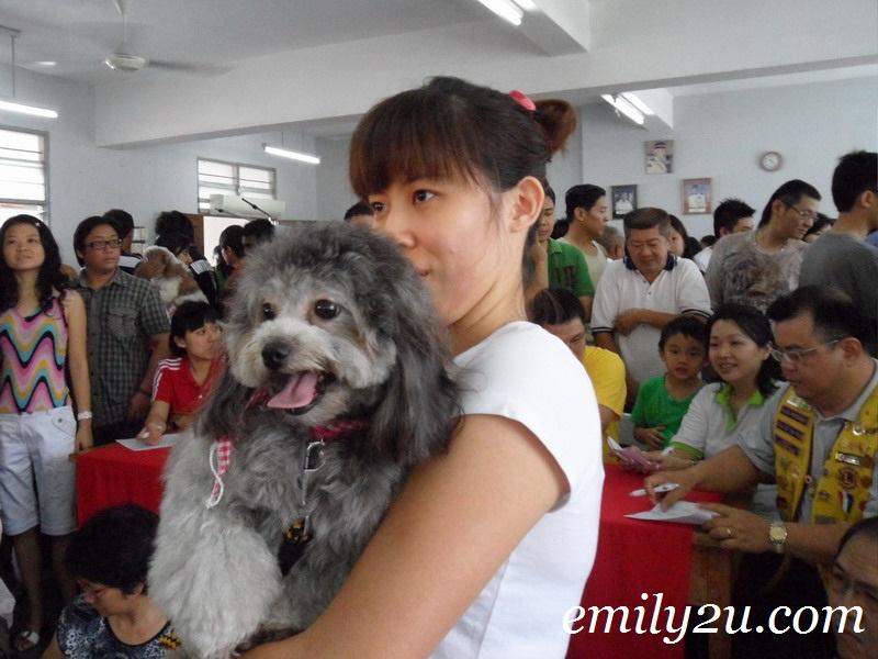 pet beauty contest