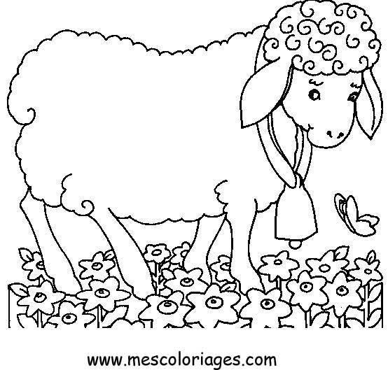Dessin A Colorier Mouton
