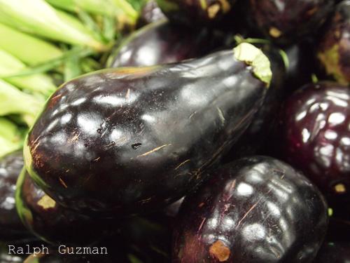Eggplant - Australia